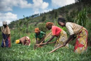 JICA 途上国で製品や技術の普及を目指す(引用:Africa Quest.com)